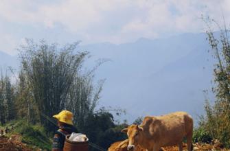 Сапа. Горными тропами Вьетнама