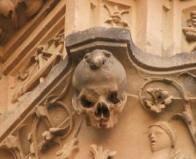 Лягушка на фасаде университета