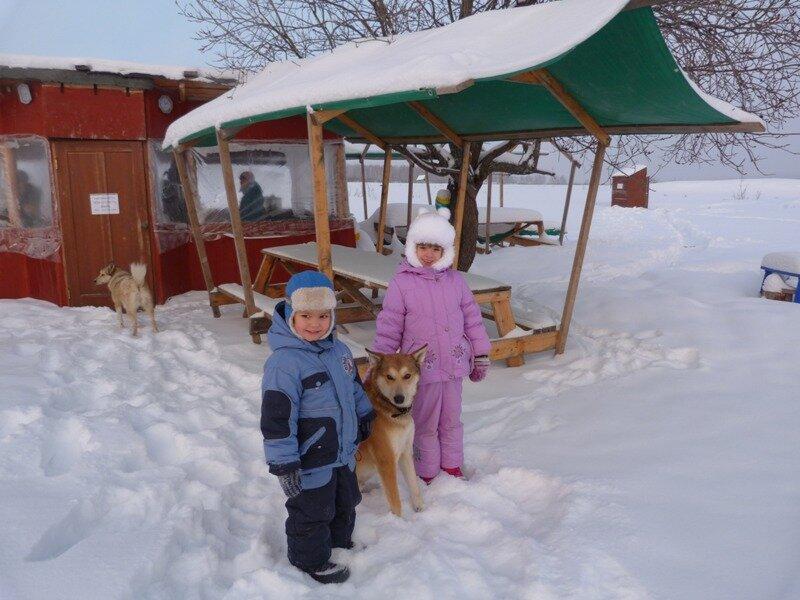 """Дети с местной собакой у зимней """"беседки"""""""