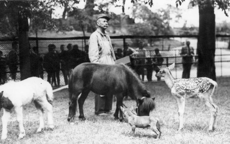 Архивные фотографии Зоопарка в Будапеште